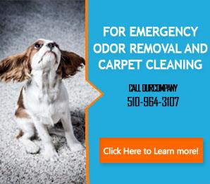 About Us | 510-964-3107 | Carpet Cleaning Oakland, CA